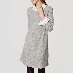 NWT Loft Swing Sweater Dress Sz XS